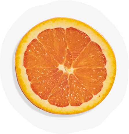 https://heyzolt.com/wp-content/uploads/2020/02/Zolt_Ingredients_NaturalOrangeFlavor.png